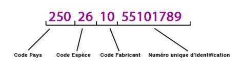 numero-identification