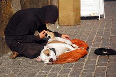 mendiant-son-chien-et-rat-51112316