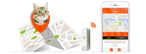 gps-collar-for-cats-fr