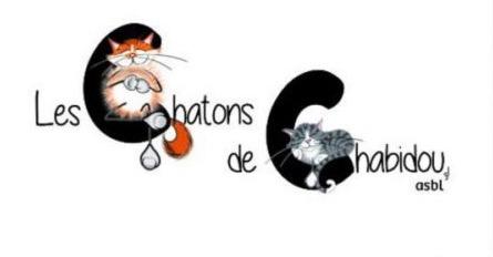 Chatons de Chabidou - Logo